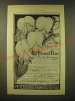 1893 Peter Henderson & Co. Seeds Ad - The queen of all Sweet Peas Emily