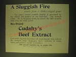 1893 Cudahy's Extract of Beef Ad - A Sluggish Fire
