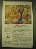 1924 Davey Tree Expert Co. Ad - Your trees may be suffering