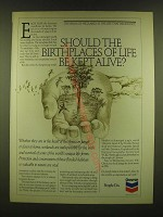 1990 Chevron Oil Ad - Should the birthplaces of life be kept alive?