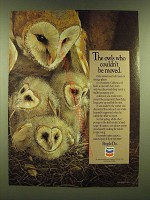 1990 Chevron Oil Ad - The owls who couldn't be moved