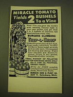 1950 Burgess Seed & Plant Co. Ad - Burgess Climbing Trip-L-Crop Tomato