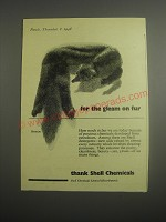 1948 Shell Chemicals Ad - For the gleam on fur