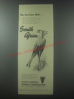 1954 South African Tourist corporation Ad - the Secretary Bird