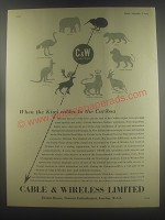 1954 Cable & Wireless Limited Ad - When the Kiwi cables to the Caribou