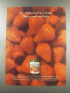 1997 Edy's Whole Fruit Strawberry Sorbet Ad - Some strawberries end up on