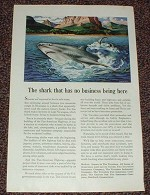 1946 Travelers Insurance Ad - Shark Has No Business!!