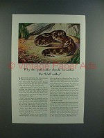 1945 Travelers Insurance Ad w/ Puff Adder Snake