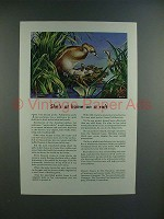 1945 Travelers Insurance Ad w/ Pied-billed Grebe