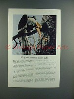 1939 Travelers Insurance Ad w/ Great Hornbill
