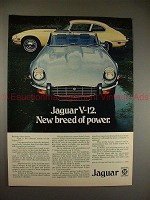 1973 Jaguar V-12 2+2 & Convertible Ad, Breed of Power!