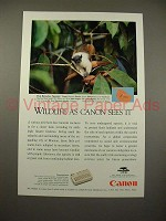 1994 Canon Communicator Ad w/ Pied Bare-face Tamarin