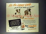 1948 Gaines Dog Food Ad - Boston Terrier
