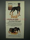 1951 Dash Dog Food Ad - Doberman Pinscher