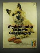 1966 Gaines-Burgers Dog Food Ad - Beef Up