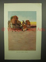 1908 Illustration by Lawren S. Harris - Camels, Desert