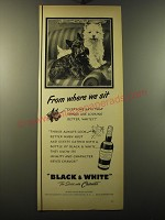 1950 Black & White Scotch Ad - From where we sit