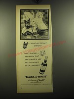 1949 Black & White Scotch Ad - What - no privacy, whitey?