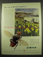 1956 Shell Aldrin Ad - The Case of Merodon Equestris