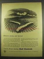 1956 Shell Aldrin, Dieldrin Insecticide Ad - Harvest