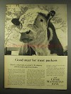 1956 Chase Manhattan Bank Ad - Steer for Meat Packers