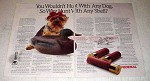 1990 Federal Shotshells Ad - Why Hunt With Any Shell