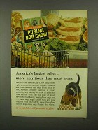 1965 Purina Dog Chow Ad - America's Largest Seller