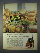 1966 Purina Dog Chow Ad - America's Largest Seller