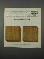 1966 Mead Laminate Paper Ad - Which Wood Isn't Wood