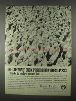 1967 Texas Eastern Ad - Corwins' Duck Production