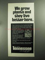 1968 Tennessee Development Ad - We Grow Plants