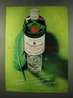 1973 Tanqueray Gin Ad - If This Were Ordinary