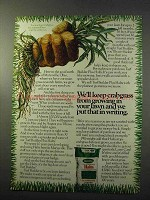 1977 Scotts Turf Builder Plus Halts Ad - Crabgrass