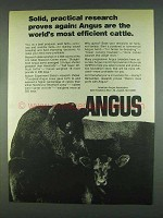 1978 American Angus Association Ad - Solid Research