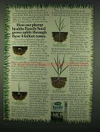 1978 Scotts Family Grass Seed Mixture Ad - Plump