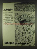 1978 Potlatch Corporation Ad - Working Trees