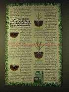 1979 Scotts Family Seed Ad - Plump Healthy Family Seed