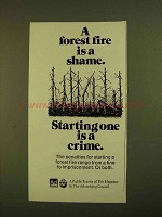 1979 U.S. Forest Service Ad - Forest Fire is a Shame