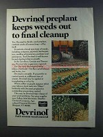 1981 Stauffer Devrinol Weed Control Ad - Final Cleanup