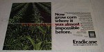 1982 Stauffer Eradicane Ad - Now Grow Corn