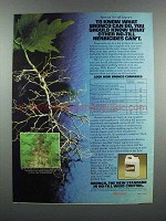 1983 Monsanto Bronco Herbicide Ad - Know What Can Do