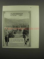 1920 The Homestead Resort Ad