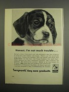 1952 Sergeant's Dog Care Products Ad - I'm Not Trouble