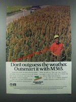 1985 Dekalb-Pfizer M565 Ad - Don't Outguess the Weather