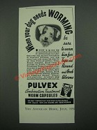 1938 Pulvex Worm Capsules Ad - When Your Dog Needs Worming
