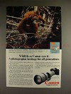 1981 Canon F-1 F1 Camera Ad, Orangutan - Wildlife!!