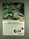 1985 Canon F1 F-1 Camera Ad w/ Florida Panther - NICE!!