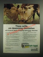 1987 Hoechst-Roussel Safe-Guard Dewormer Ad - These Cattle