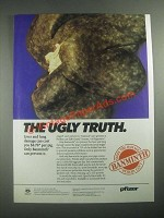 1987 Pfizer Banminth Ad - The Ugly Truth