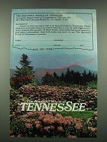 1970 Tennessee Tourism Ad - The Beautiful World